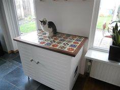 Kattenbak verborgen