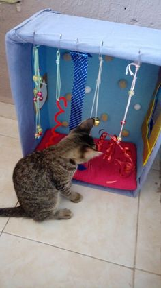 (notitle) The post appeared first on Katzen. Homemade Cat Toys, Diy Cat Toys, Pet Toys, Diy Jouet Pour Chat, Cat Castle, Getting A Kitten, Cat House Diy, Cat Enclosure, Reptile Enclosure