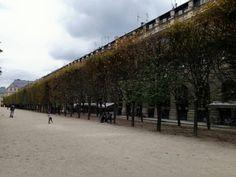 Palais royal gardens, 75001, october 2014