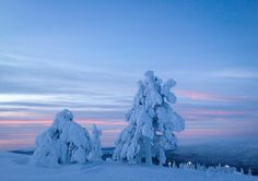 Blue and pink moment. Levi, Finland, Lapland