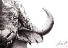 Buffalo Original graphite pencil drawing. Wall by ArtwaveStudio