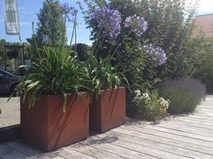 Plantenbakken, boombakken, bloembakken, haagbakken in cortenstaal (verkrijgbaar op maat)