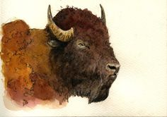 American Bison Buffalo Original Watercolor Painting by Juan Bosco.   Visit sanmartin-artscrafts.com to learn more about the artist, view his work and place custom orders.