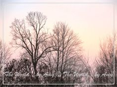 Winter Sky Photograph Print 8 x 10 by worldbyamy on Etsy, $20.00