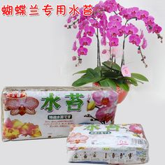 12L Garden Supplies Sphagnum moss bryophytes phalaenopsis orchid medium moisturizing nutrition soil Organic Fertilizer