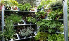 verticaal groenten en kruiden kweken op een vierkante meter  :)