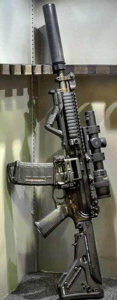 Suppressed AR 15