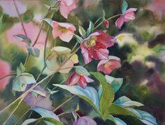 Hellebores, watercolour Watercolor Flowers, Watercolor Paintings, Watercolour, Impressionism, Original Artwork, Gallery, Floral, Artist, Plants