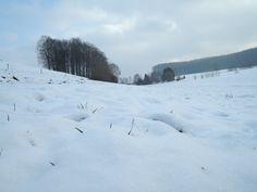 Winterlandschaft bei Melle-Gesmold (Niedersachsen)
