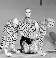 Veruschka with Cheetah
