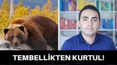 TEMBELLİKTEN KURTULMANIN YOLLARI - YouTube Brown Bear, Youtube, Animals, Animales, Animaux, Animal, Animais, Youtubers, Youtube Movies