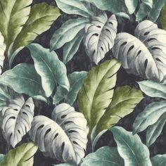 Our popular wallpaper Verena features fabulous depictions of the Monstera plant. Blue and fern-green leaves emerge from a black-blue background.
