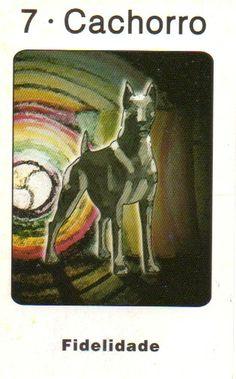 Cachorro - Yin - Fidelidade