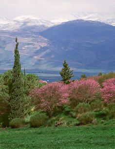 Mt. Hermon With Snowstorm In Israel