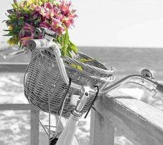 """Bom dia feliz....  """"Tomara que apesar dos pesares, a gente continue tendo valentia suficiente para não abrir mão de ser feliz.""""  (Caio Fernando Abreu)"""