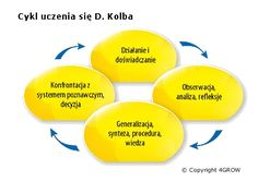 Cykl 4GROW na bazie Cyklu Kolba i Kurta Lewina