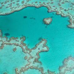 The heart of Great Barrier Reef from above  #heartofgreatbarrierreef #greatbarrierreef #coral #flying #breathtaking #whitsundays #australia #backpackingaustralia by pernillekasting http://ift.tt/1UokkV2