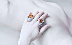 #gioielli #jewels #vennarigioielli #luxuryjewelry #illussodelleidee #florence #specialrings  Photo by: @ottaviapoli  PALOMA  Anello in oro bianco con citrino e diamanti. / White gold ring with citrine and diamonds.  GIPSY  Anello in oro bianco con citrino e diamanti. / White gold ring with citrine and diamonds.