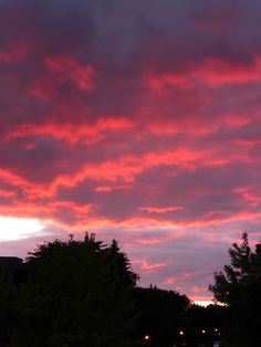 sunset in saint bruno by Marla Cable