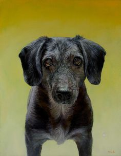 """""""Sofie"""" ~ oil on panel ~ New York City Dog Oil & Portrait Paintings For Sale By Dana Hawk"""