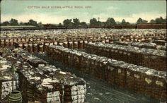 1910 Little Rock, Arkansas Cotton Bales Scene