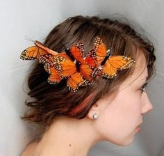 BUTTERFLIES IN YOUR HAIR
