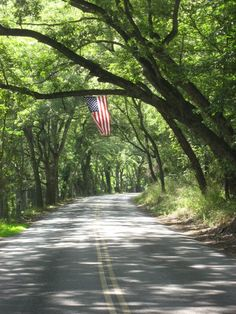 SEASONAL – SUMMER – a time for vacationing to all corners of this amazing world we live in, including a trip to see the backroads of america, this one proudly displays an american flag on river road in new hope, pennsylvania. I Love America, God Bless America, American Pride, American Flag, Country Life, Country Roads, A Lovely Journey, Independance Day, Let Freedom Ring