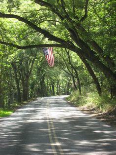Backroads, American Flag, River Road