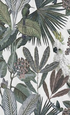 Hertex Fabrics is s fabric supplier of fabrics for upholstery and interior design Contemporary Wallpaper, Trendy Wallpaper, Home Wallpaper, Wallpaper Ideas, Hertex Fabrics, British Colonial Style, Jungle Room, Tropical Wallpaper, Iphone Background Wallpaper