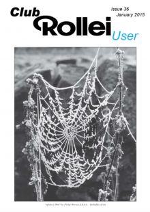 Spiders Web by Philip Warren