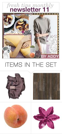 """✿ newsletter 11 