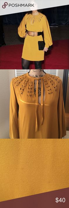 Diane von fustenberg dress Beautiful mustard yellow DVF dress. Can be worn with belt or without.  This was purchased on posh and I never got to wear because I am pregnant now.  Two tiny stains that are not noticeable. Excellent preloved condition. 100% silk Diane von Furstenberg Dresses Midi