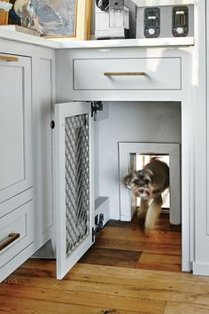 Looking for stylish dog door ideas? Check out over 25 stylish dog door installs & designs right here. The best dog door ideas around ; Animal Room, Dog Spaces, Small Spaces, Small Space Design, Dog Rooms, Dog Houses, My Dream Home, New Homes, House Design