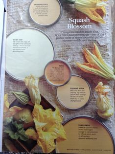 Fall paint colors From Better homes and gardens My Better Homes