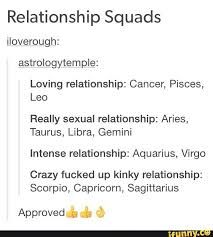 Image result for zodiac squads