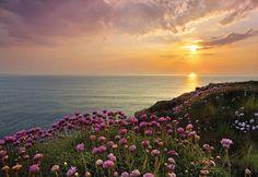 Land's End is het uiterste puntje van Cornwall, in het zuidwesten van Engeland. Breng dit mooie fotobehang nu in uw eigen huis. Dit foto realistisch behang zal in 8 banen (elk 92x127cm) worden geleverd. Dit brengt tot een totale grootte van 368 x 254 cm. Een aantal eigenschappen van het behang: – Grootte: 368×254 cm, […]