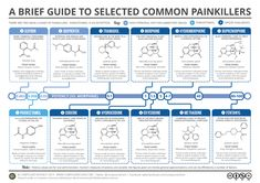 Brief Guide to Common Painkillers. Click 'visit site' to read more & download.