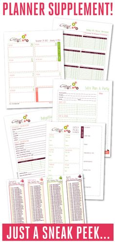 Grab the additional Supplemental Kit to create your own Family Manager Binder/Notebook and start your year organized!  Fully editable forms!