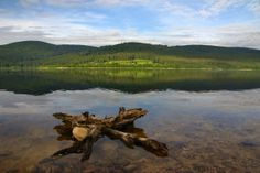Schluchsee is the largest lake in the Black Forest and for years one of the cleanest in Germany