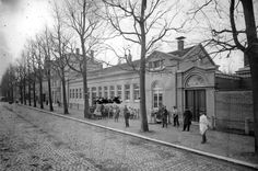 Leiden, Belle Epoque, Old Pictures, Netherlands, Holland, Dutch, Street View, Mansions, History