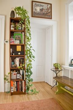 love the tall bookcase, the trailing philodendron, and the recycled glass bottle on the floor, oh and that killer bench and side table Green Indoor plants Tropical Boho Bohemian Relax Nature Hippy Bold Paint Styling Interior Design Home Botanical Apartment Design, Apartment Living, Apartment Therapy, Apartment Plants, Hippie Apartment, Living Spaces, Living Room, Home And Living, Interior Decorating