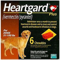 nexgard spectra orange extra small dog dogs puppies comparing heartworm medicine for dogs and cats petcarerx heartgard nexgard spectra green medium dog dogs