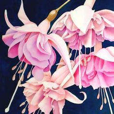 Silk Painting Fuchsia