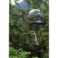 Located in Okinawa, Japan, tree house by Kobayahsi Takashi.