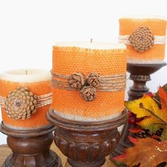 Transform pinecones into lovely and rustic wooden flowers. #diy #crafts