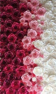 Colorful Flower Wall For Wedding Photography Backdrop Large Paper Flowers Paper Flower Backdrop Giant Paper Flower Phone Wallpaper, Butterfly Wallpaper, Cellphone Wallpaper, Flower Wallpaper, Nature Wallpaper, Iphone Wallpaper, White Roses Wallpaper, Amazing Flowers, Beautiful Roses