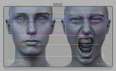 Human Face Anatomy Drawing Book Unique Rage Front Human Anatomy Reference In 2019 Facial Anatomy, Head Anatomy, Anatomy Poses, Body Anatomy, Anatomy Study, Anatomy Reference, Anatomy Male, Human Anatomy For Artists, Human Anatomy Drawing