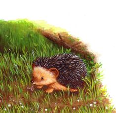 Αποτέλεσμα εικόνας για irene owens hedgehog