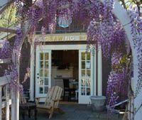 Tea room in Cos Cob, Connecticut. Anyone know what kind of flowers those are? Are they lilacs? They are sooo pretty! Cos Cob, Buy Tea Online, Old Greenwich, Cute Cafe, Escape Plan, Great Restaurants, Drawing Room, High Tea, Connecticut