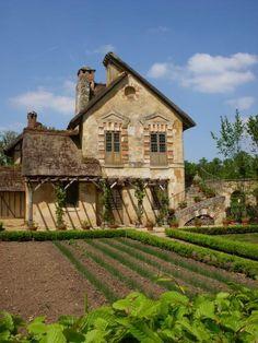 Farmhouse crop fields